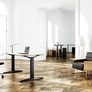 vank-move-2